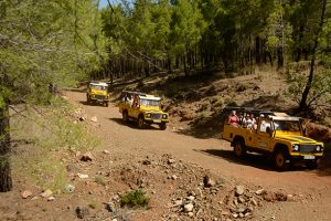 jeep-safari-5